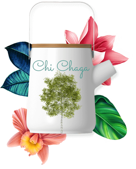 wild chaga tea