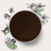 chaga extract powder