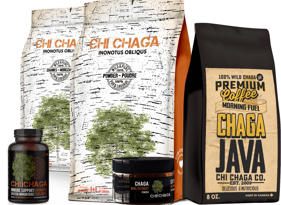 best chaga products