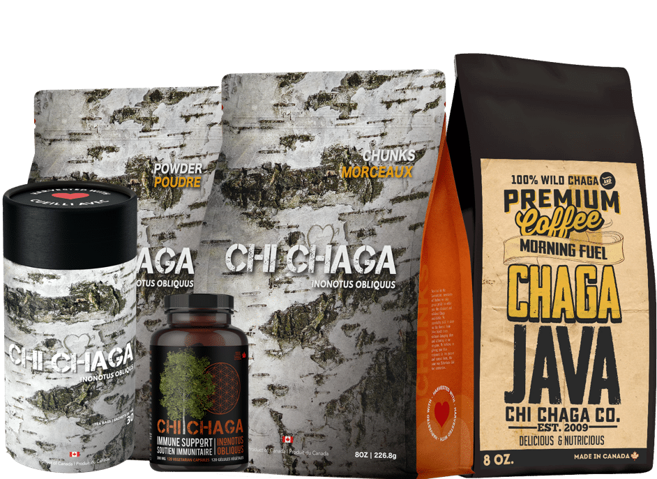 Chaga Mushroom Products For Sale in The US and Canada